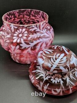 Rare Fenton Cranberry Opalescent Daisy and Fern Apothecary Jar 8 x 6.5 EUC